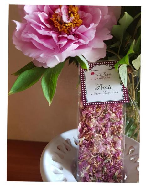 Petals of Damask Rose